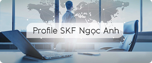 Profile SKF Ngọc Anh